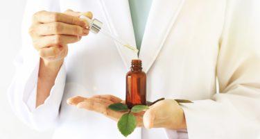 Tratamento com fitoterápicos aumentam na rede pública de saúde