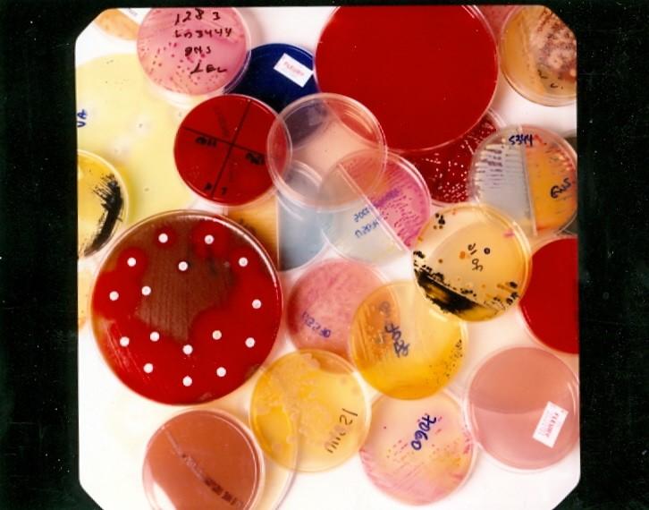 passo-a-passo-para-preparar-o-laboratorio-de-microbiologia